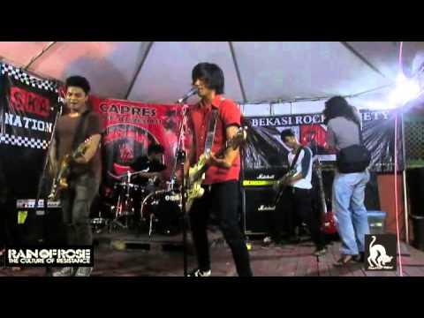 Rain Of Rose Kemuri-PMA(Cover)Live
