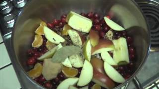 Apple And Cranberry Drink Hot! Simmering Mulled Apple Cider Spice Drink