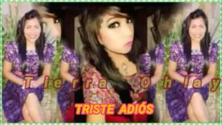 Marimba  Tierra Ohlaya vol 3 Triste  Adiós