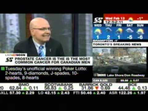 Rocco Rossi on CP24 Live at Noon - February 13, 2013