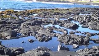2012 Hawaii Astro/Geology Field Trip (Day 2)