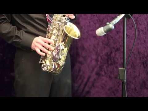 Selmer AS 300 Alto Saxophone  eBay ITEM # 111072341920