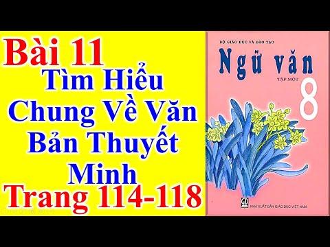 Ngữ Văn Lớp 8 Bài 11 – Tìm Hiểu Chung Về Văn Bản Thuyết Minh – Trang 114 - 118