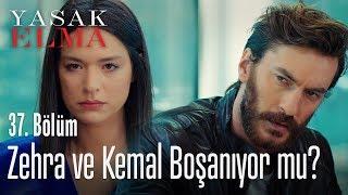 Zehra ve Kemal boşanacak mı? - Yasak Elma 37. Bölü