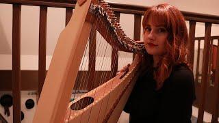 Taylor Swift - exİle ft. Bon Iver (Harp Cover)