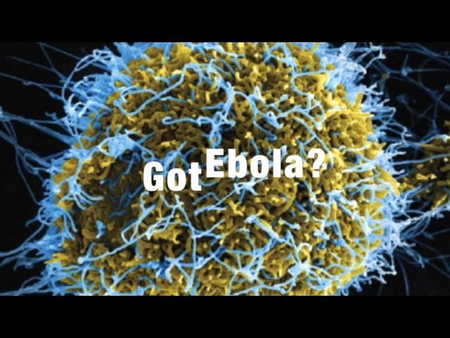 Got Ebola?