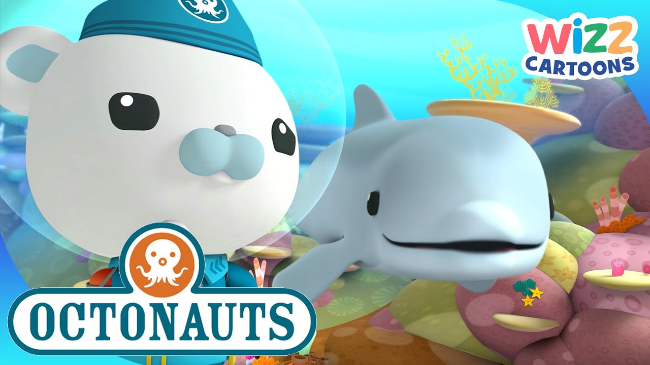 @Octonauts - Trouble in the Coral Reef | Compilation | Wizz Cartoons