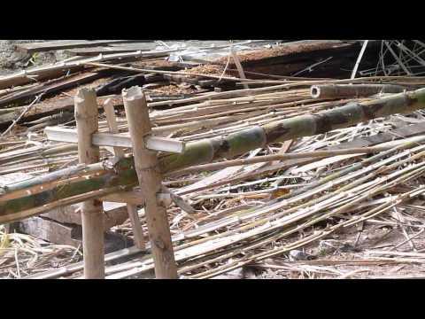 Splitting Bamboo In Laos
