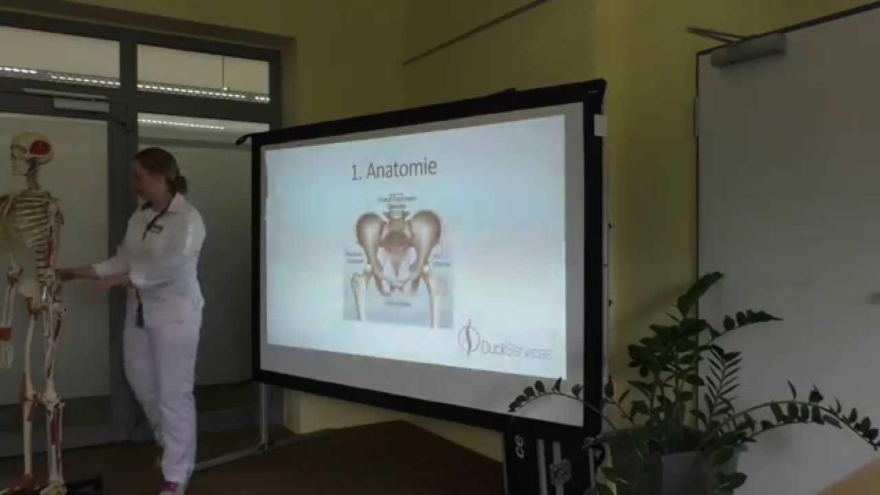 Dämon ISG Teil 1 Einführung und Anatomie - YouTube