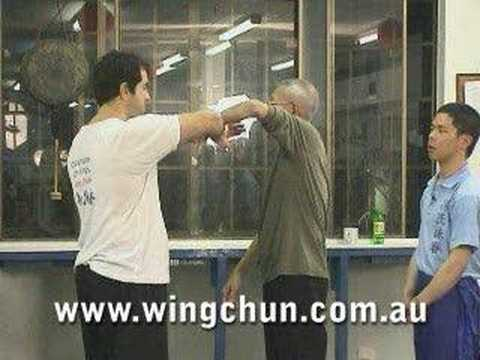 Sigung Chu Shong Tin