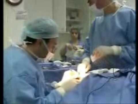 Nader Saab (Reviews) Dubai, UAE, Plastic Surgeon