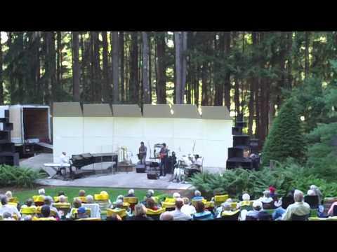 "TIZER - ""Downbeat"" - Wildflower Music Festival (Aug 10, 2013)"