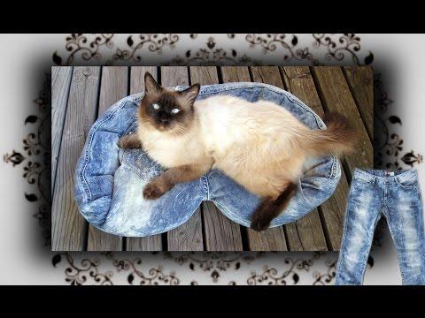 diy-😻-jeans-sofa-für-katzen-&-hunde-|-cat-couch