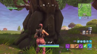 Getting the solo dub in fortnite battle royale