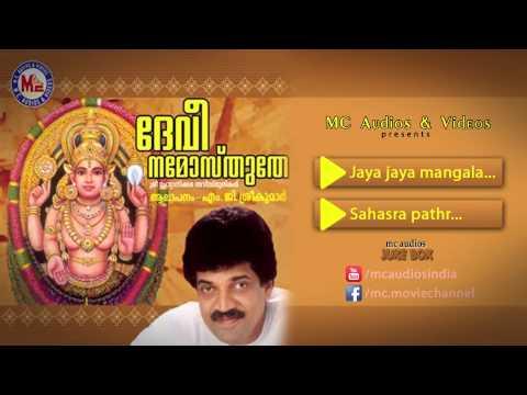 ദേവീ നമോസ്തുതേ | DEVI NAMOSTHUTHE | Hindu Devotional Songs Malayalam | Chottanikkara Devi Songs