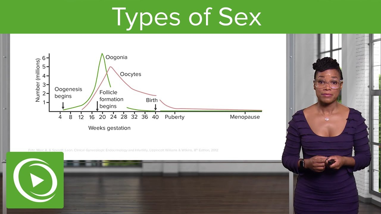 Types of Sex – Gynecology | Lecturio