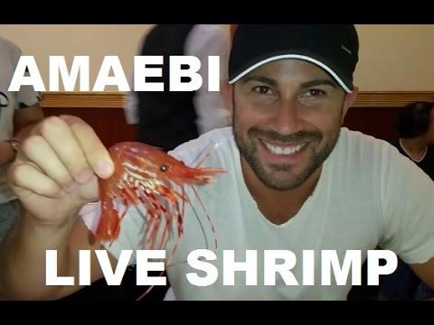 Eating Live Sweet Spotted Shrimp Amaebi Sashimi thumbnail