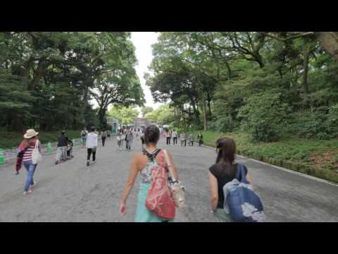 Videowalk in Meiji shrine