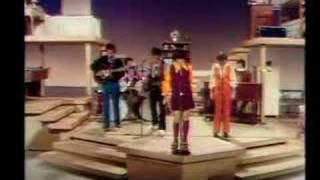 Cowsills - Silver Threads and Golden Needles
