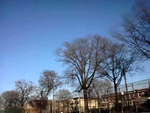 Hawk attacks R C helicopter in brooklyn park!!!!!