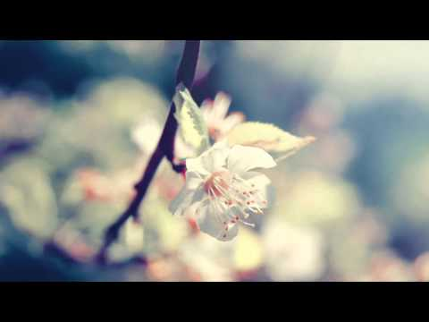"""""""Promise"""" - Beautiful Music Box (Kyoto Music Box Ensemble)"""