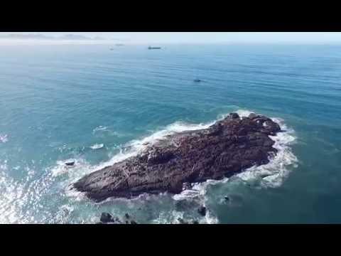 Seal Island Mosselbay