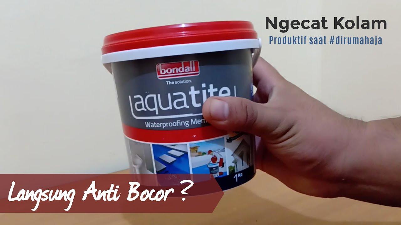Cat Kolam Ikan Anti Bocor Aquatite By Bondal Dirumahaja Youtube