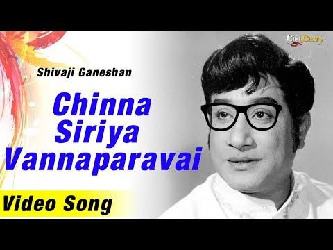 Chinna Siriya Vannaparavai | Song |Kungumam Movie | Sivaji ganesan | T. M. Soundararajan & S. Janaki