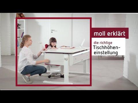 Kinderschreibtisch Welche Höhe Moll Shop Deutschland