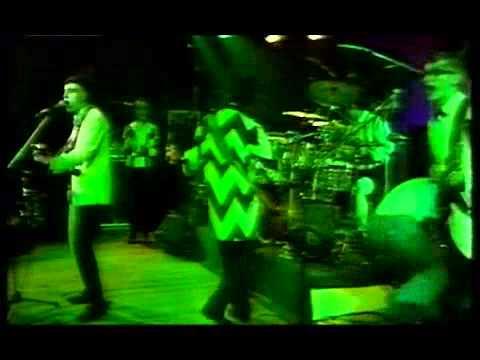 Split Enz Live