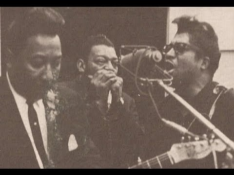 Little Walter-You'd Better Watch Yourself