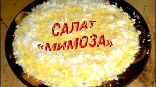 Салат Мимоза.Простые кулинарные видео-рецепты салатов.