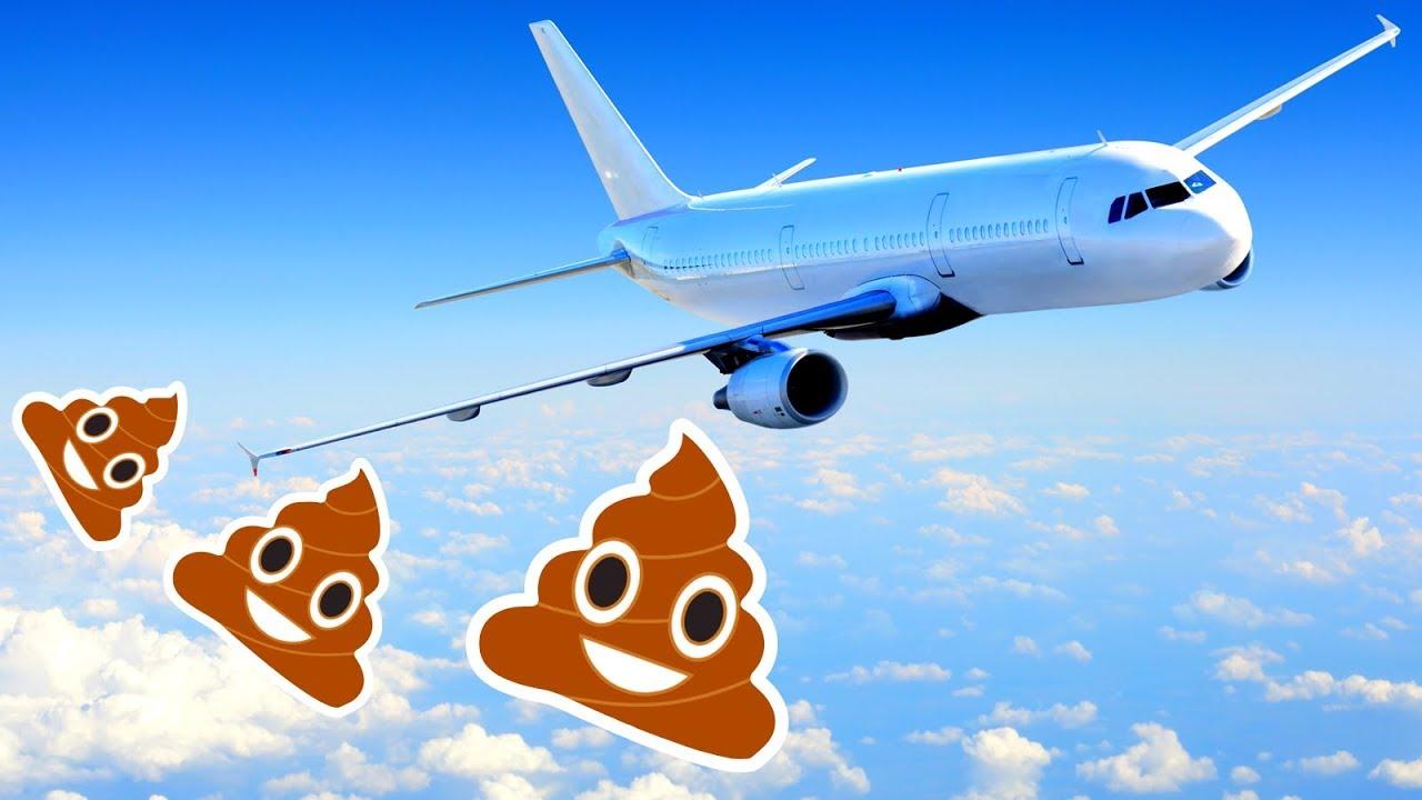 ЧТО ПРОИСХОДИТ, когда Вы Смываете в Туалете Самолета? 7 секретов самолетов