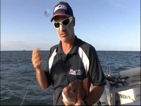 Reel Time Fishing Charters Matt Cini and Jason Kennedy Port Phillip bay Snapper