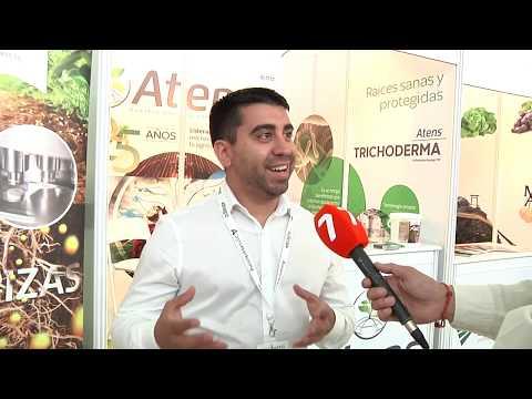 Entrevista Javier Jofré Amaya, DIrector De Marketing De Atens
