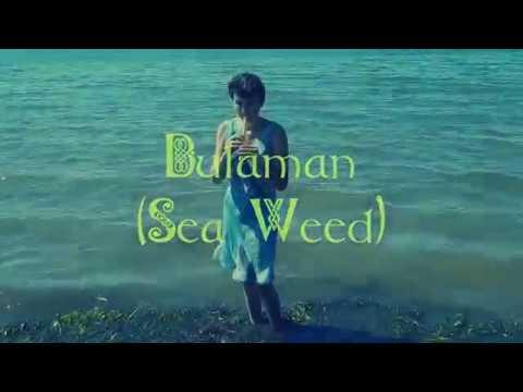 Dulaman (Sea Weed)-Erandolin Strings
