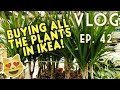 BUYING ALL THE PLANTS IN IKEA - VLOG EP. 42