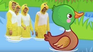 Beş Küçük Ördek Şarkısı - Sayıları Öğreten Çocuk Şarkısı