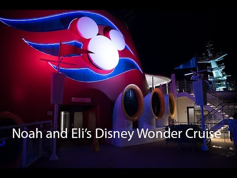 NEW!  Disney Wonder Cruise W/ Noah And Eli