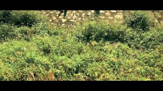 Nguyện Cho Thế Giới Bình An Mai Khôi [Official MV HD]