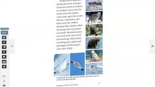 Polar Regions of the Earth AudioBook