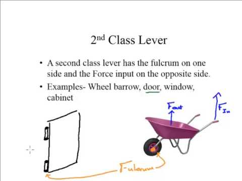 Lecture Three Types Of Levers Youtube