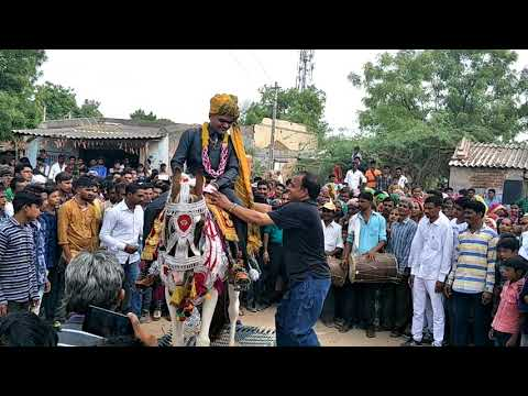 Marriage Horse Dance Gujarati Song Dj Full  live Varghodo video