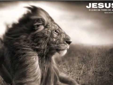 Jesus O Leao Da Tribo De Juda Youtube