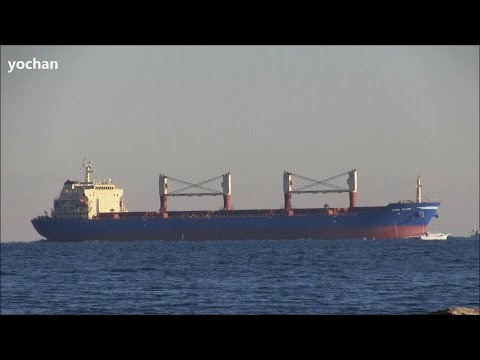 Bulk Carrier / Bulker: ALPINE TRADER (Owner: Goldenport Shipmanagement, IMO: 9438028) Underway