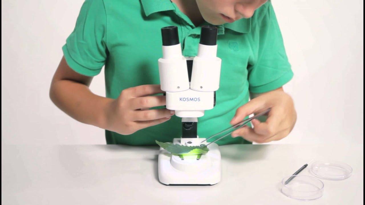 3d makroskop youtube