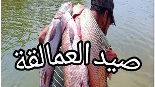 شاهد صيد سمك عملاق🐟🐟 باسماء متابعينا الكرام