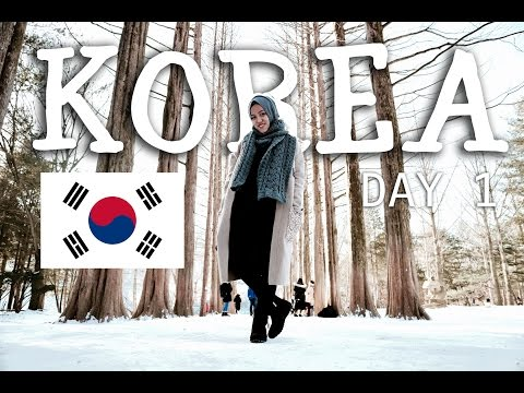 (semi)VLOG: Korea Trip Day 1