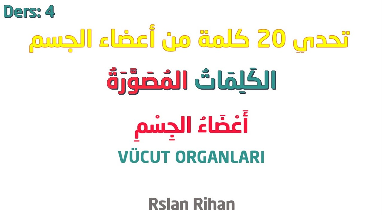 تعلم اللغة التركية من الصفر  / الدرس الرابع : أعضاء الجسم 2