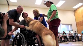Assistance Dogs Meet Their New Owners
